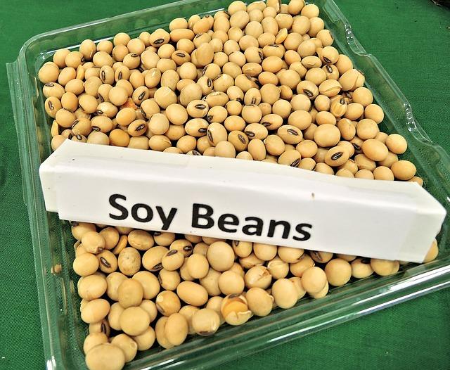 イソフラボンが豊富な大豆