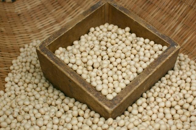 イソフラボンが豊富な大豆のイメージ